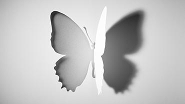 Butterfly - Delicate and exquisite art out of a flat sheet of white office paper